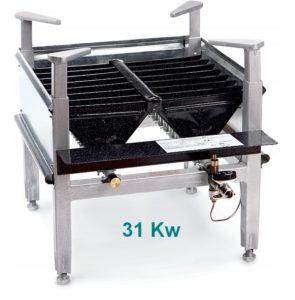 BRULEURS gaz PRO 31 kw